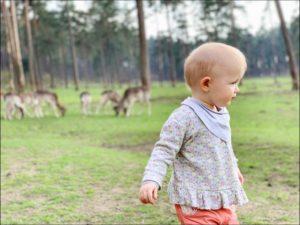 Der Naturwildpark Granat – Lohnt sich ein Besuch?