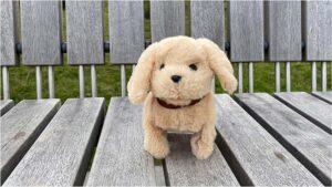 Wuffwuff – mein kleiner Freund