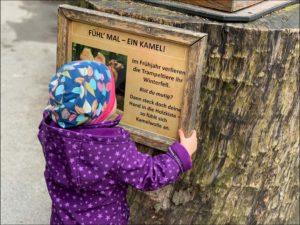 Der Dortmunder Zoo – Ein Erfahrungsbericht